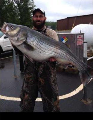 86ZO webBIG FISH JODY PRESSLEY copy