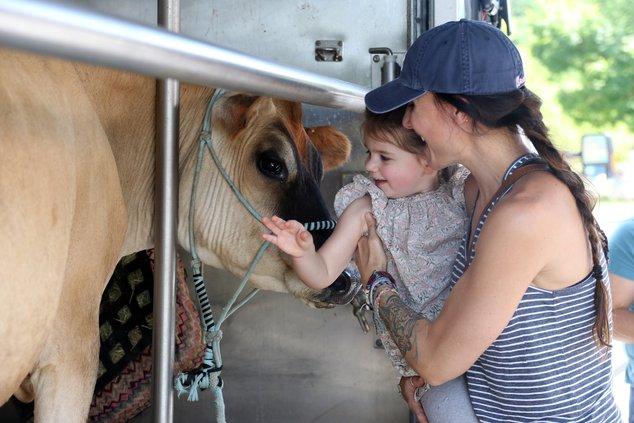mobile dairy farm 1