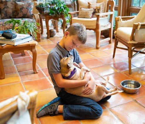 I-Senior dogs pic 2.jpg
