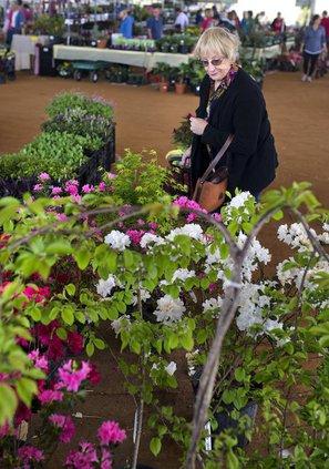 I-Gardening expo pic 1.jpg