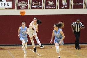 Lady Tigers basketball Jan. 17