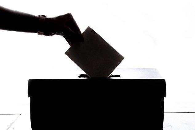 vote stock