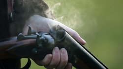 gun stock 2