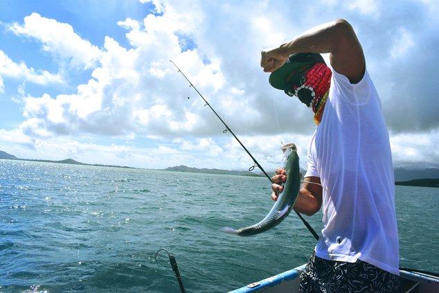 Fishing stock 3