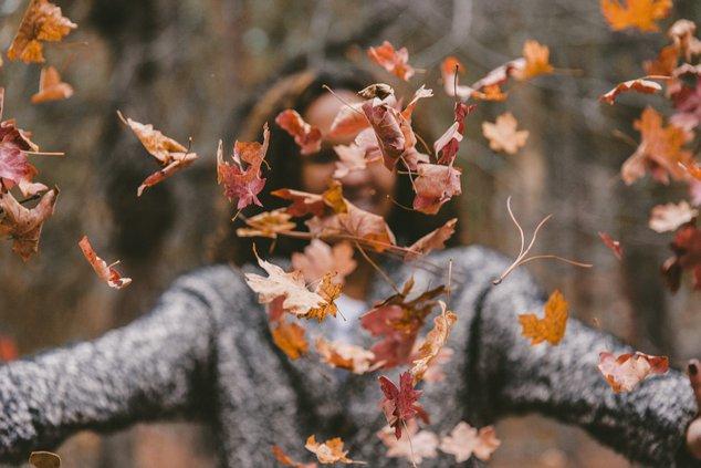 leaves stock
