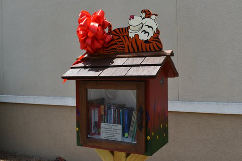 Robinson little free library 2